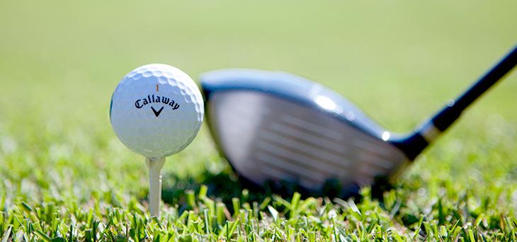잔디위의 골프공 사진